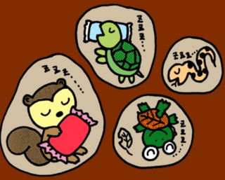 動物冬眠.PNG