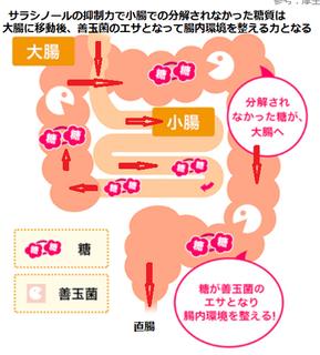 参考厚生省e-ヘルスネット.PNG