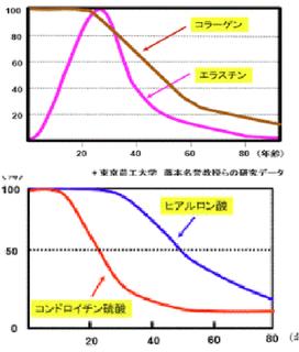 合成コラーゲン.png
