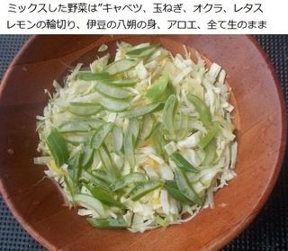 合成サラダ.jpg