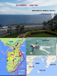 合成伊豆半島.jpg