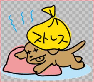 犬のストレス2.PNG