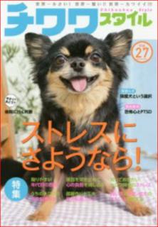 犬のストレス4.PNG