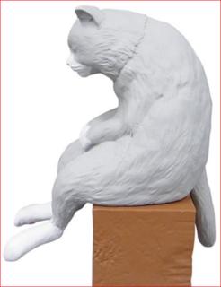 猫背.PNG
