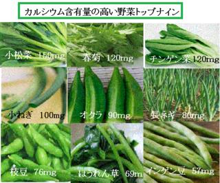 野菜カルシウム.png