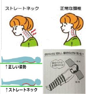 頸椎」.png